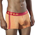 CLEVER - Ref.2287 - Boxer Netherlands de Clever