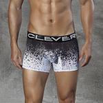 CLEVER - Ref.2290 - Boxer Désintégration de Clever